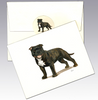 English Staffordshire Terrier 8 Pack Notecards