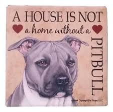 Pitbull (Gray color) Absorbent Stone Coaster