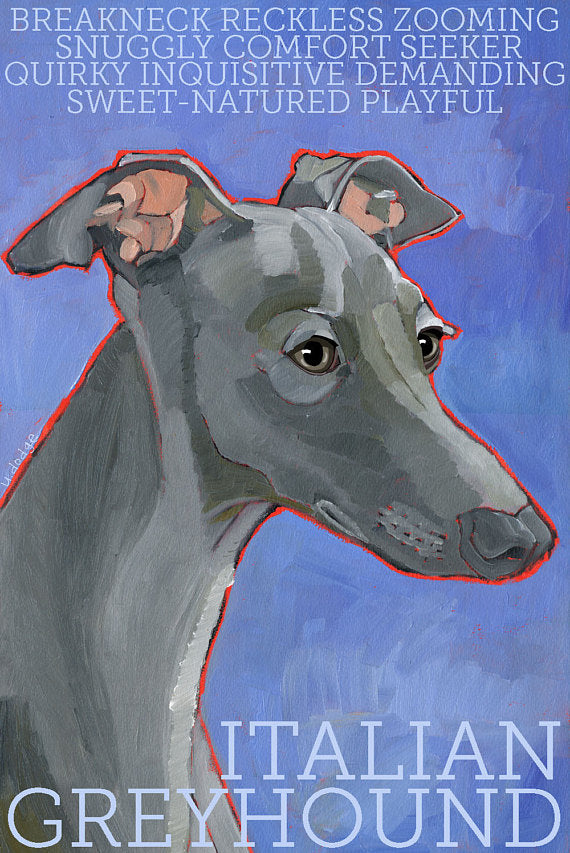 Italian Greyhound 2 x 3 Fridge Magnet