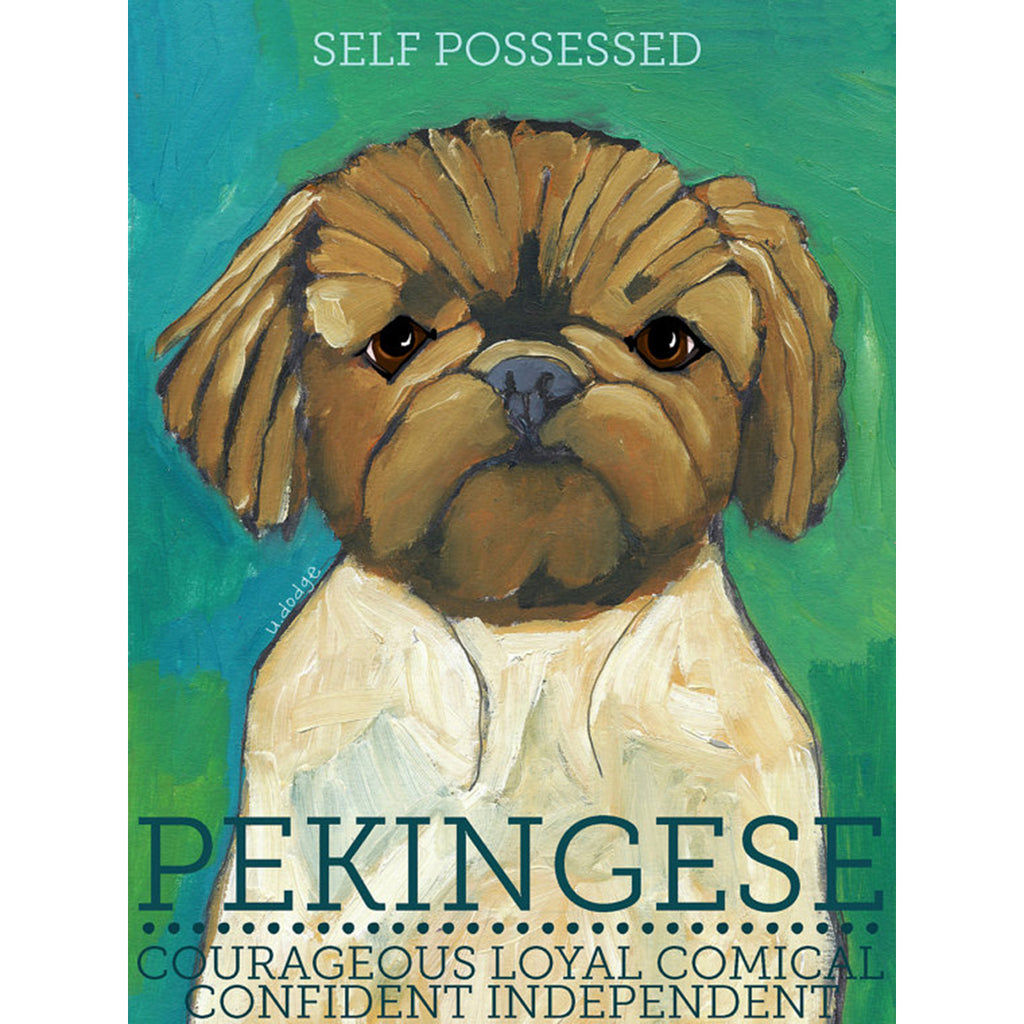 Pekingese 2 x 3 Fridge Magnet