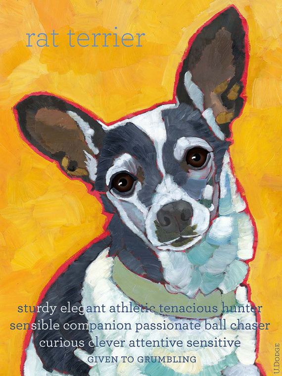 Rat Terrier 2 x 3 Fridge Magnet