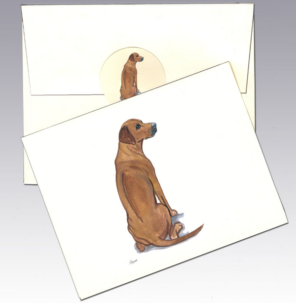 Rhodesian Ridgeback 8 Pack Notecards