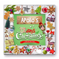 12 Days Of Christmas Storybook For ONE Star - 40/50