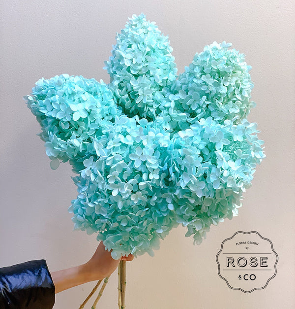 Preserved hydrangea aqua blue colour