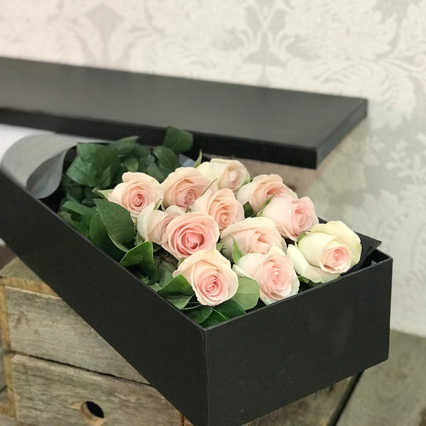 Pink Roses/Boxed