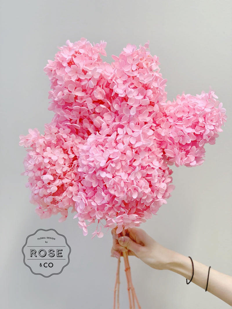 Preserved Hydrangea Pink colour