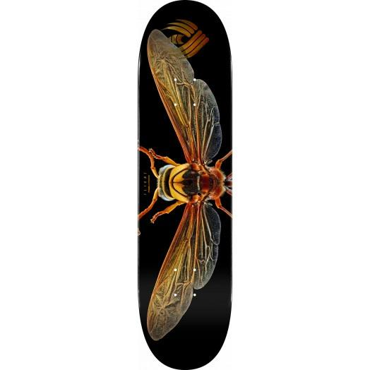 PowellPeralta - Flight Deck Biss Potter Wasp 8.0""