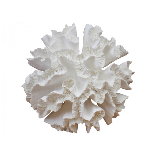 Colt Coral 20cm  Homewares nz