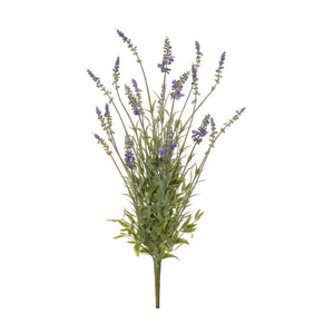 Lavender Bush 50cm  Homewares nz