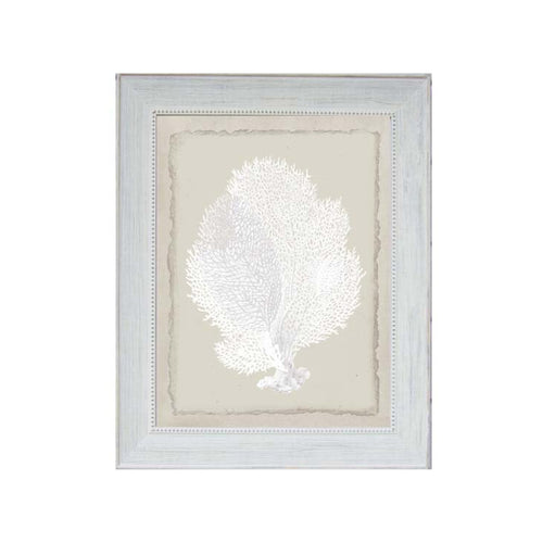 White Tree Coral Print In Beaded Frame  Homewares nz