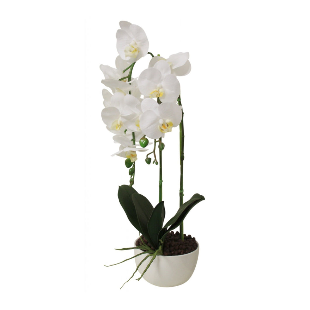 Faux Orchid Triple Stem - White  Homewares nz