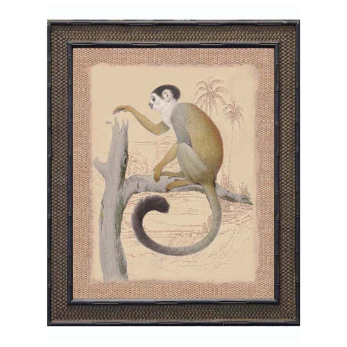 Monkey With Black Hair Print In Black Frame