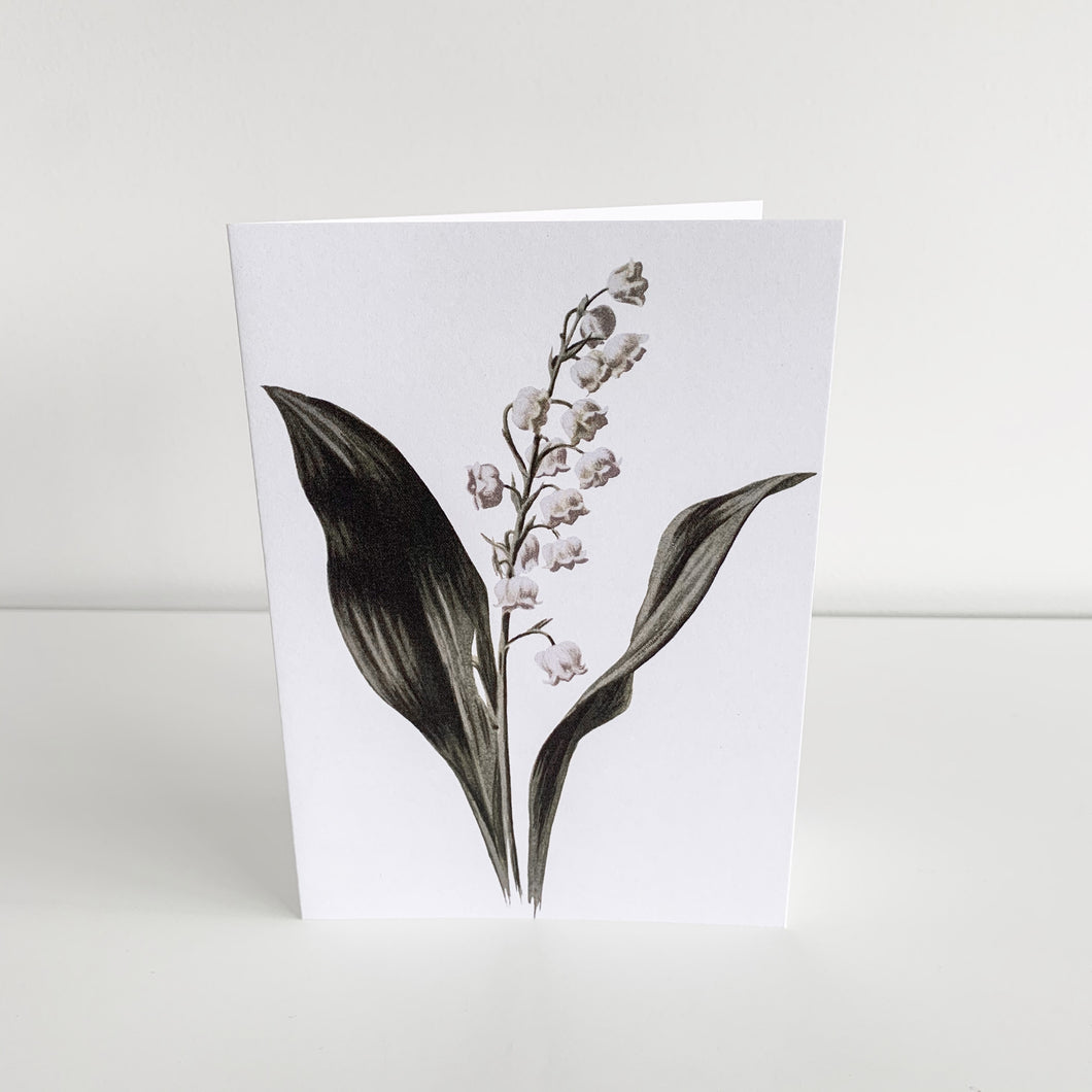 Standard Greeting Card - Lily Of The Valley