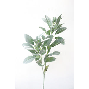 Lambs Ear Long Stem 71cm Homewares nz