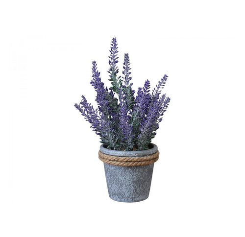 Lavender Pot With Rope Trim