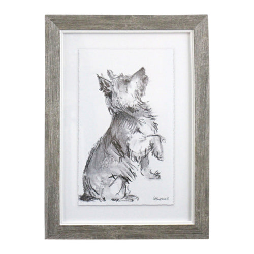Puppy Drawing In Frame - Australian Terrier  Homewares nz