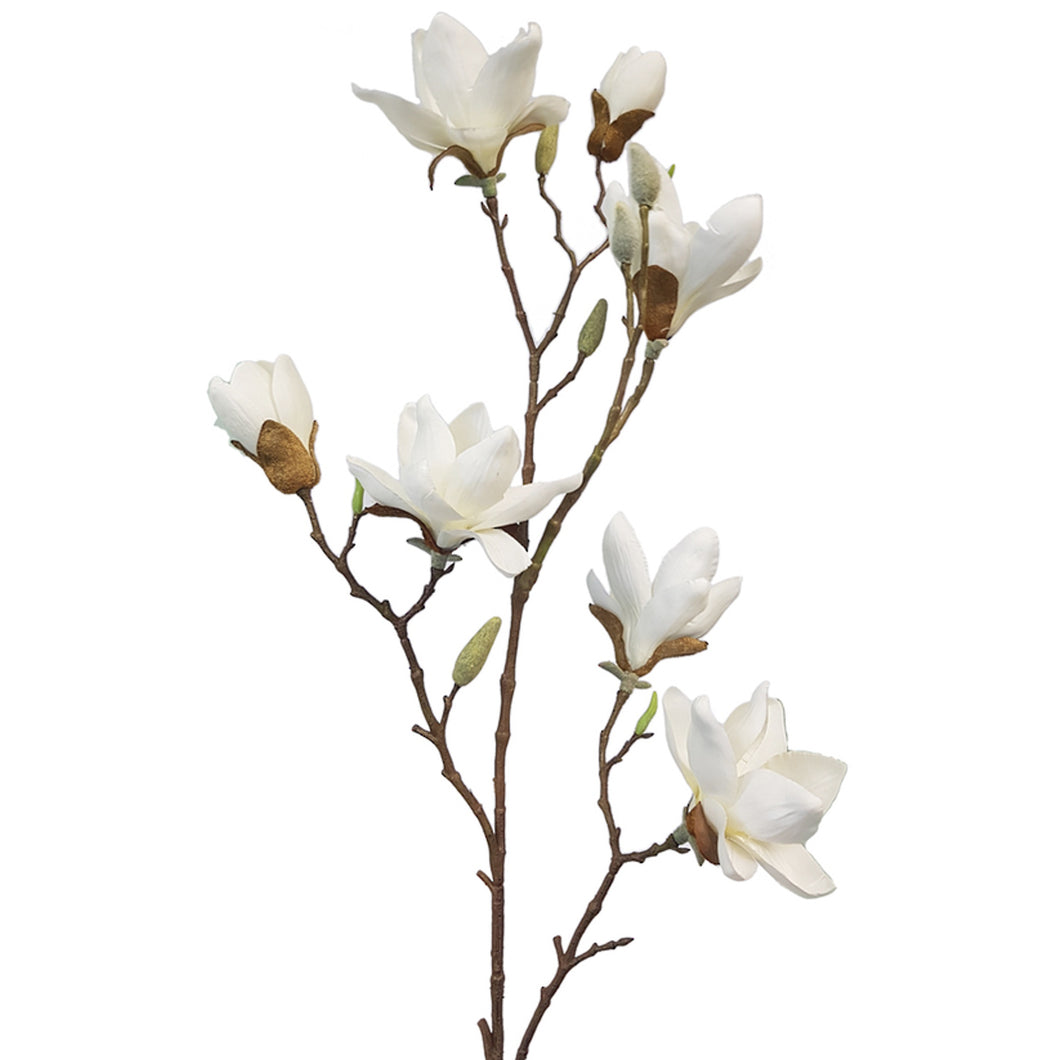 Anise Magnolia Spray 102cm - Cream  Homewares nz