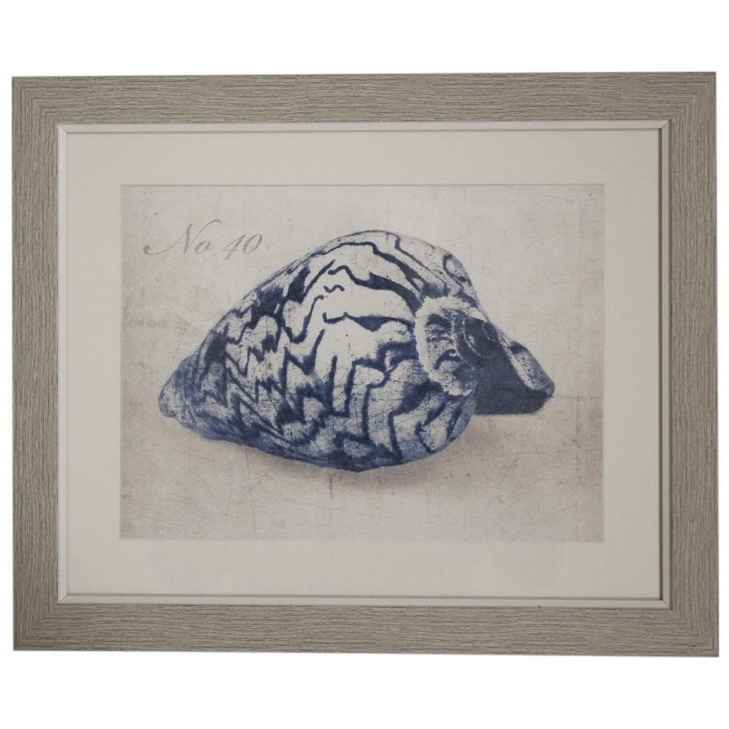 Blue Conch Shell Print In Natural Frame Homewares nz