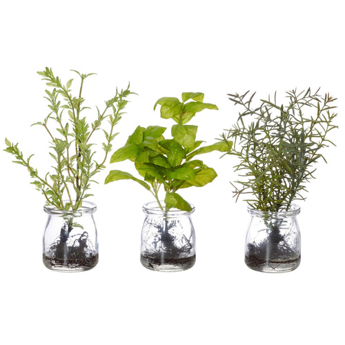 Faux Herbs In Water Jar (Assorted) Homewares nz