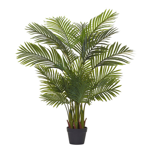 Cane Palm 120cm homewares nz