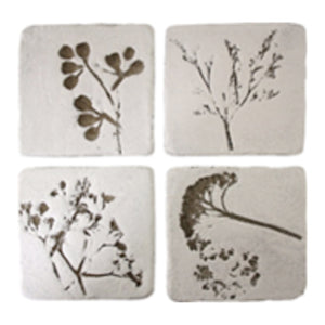 Coaster Botanical  Homewares nz