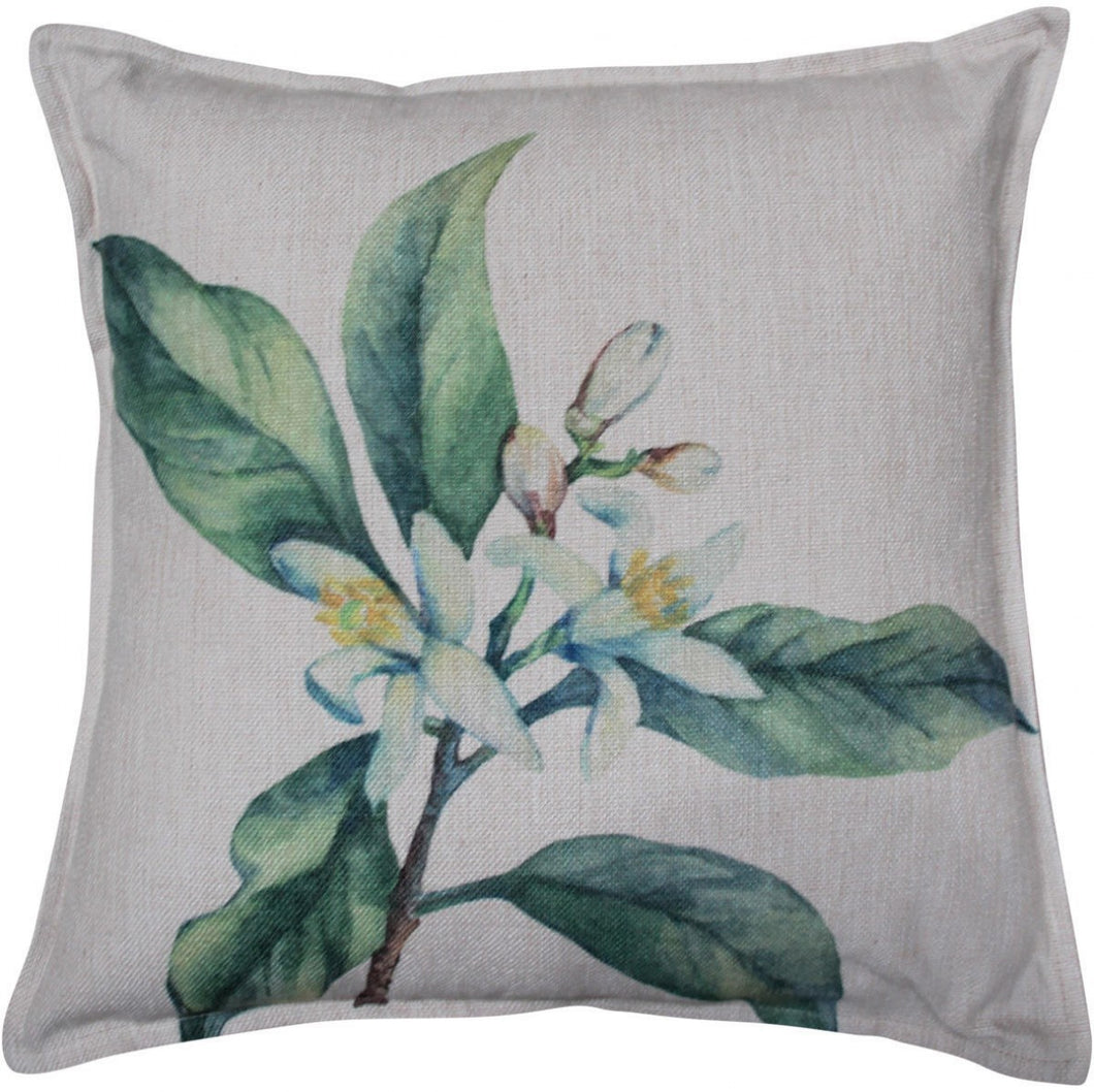 Botanical Cushion 45x45cm Homewares nz