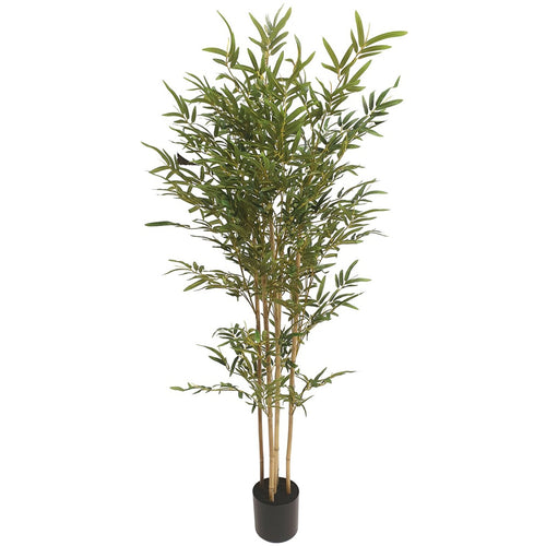 Potted Bamboo Tree 150cm Homewares nz