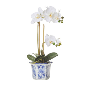 Butterfly Orchid Chinoiserie Pot - Medium Homewares nz