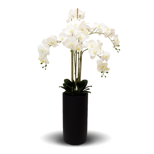 Faux Orchids In Tall Black Pot 135cm