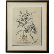 Load image into Gallery viewer, Floral Wall Art In Black & Gold Frame  Homewares nz