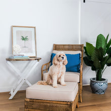 Load image into Gallery viewer, Havana Rattan Armchair With Cushions  Furniture nz