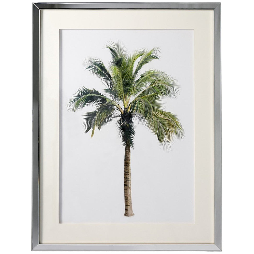 Palm Print In Mirrored Frame  Homewares nz