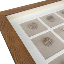 Load image into Gallery viewer, Sea Sponge Collage Wall Art In Natural Frame  Homewares nz