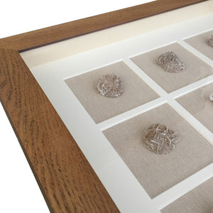 Sea Sponge Collage Wall Art In Natural Frame  Homewares nz