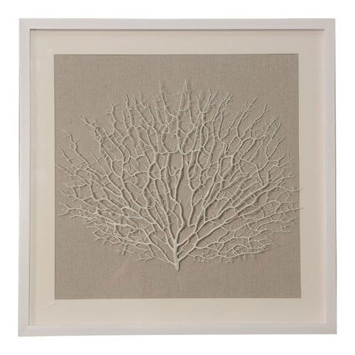 White Coral Framed Wall Art 60cm  Homewares nz