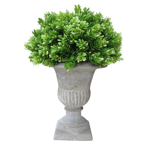 Moss In Formal Urn  Homewares nz