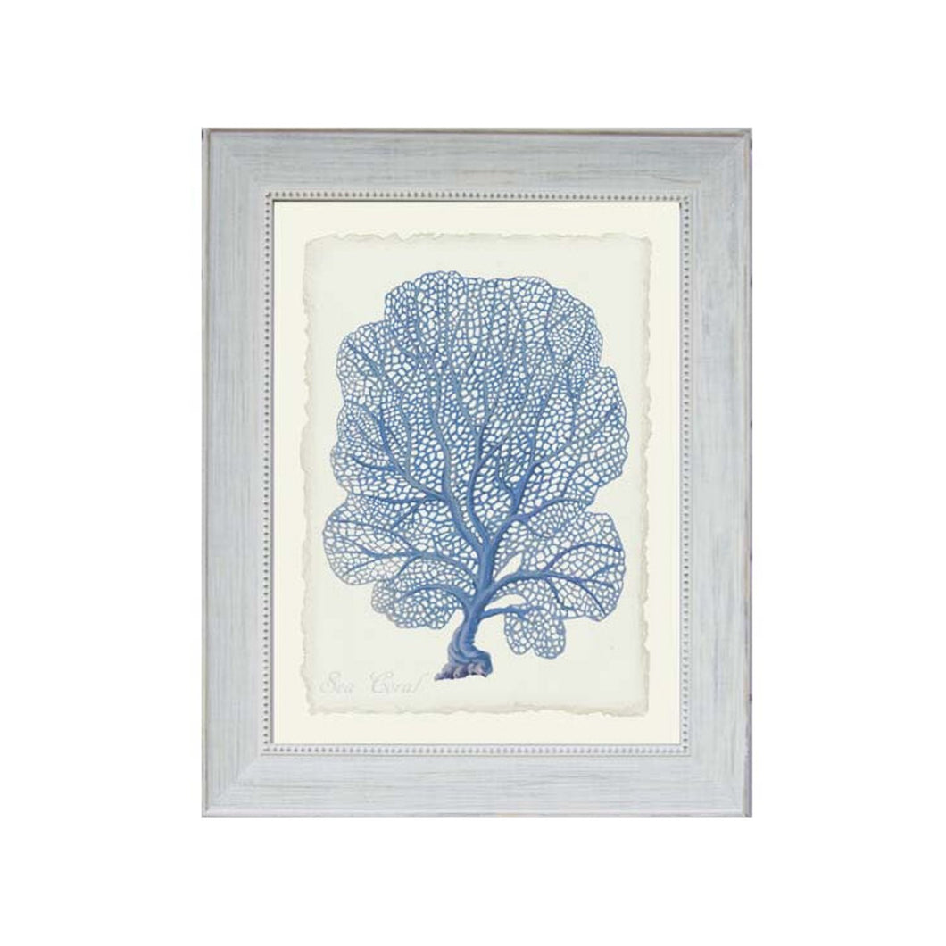 Blue Sea Fann Coral Print In Beaded Frame  Homewares nz