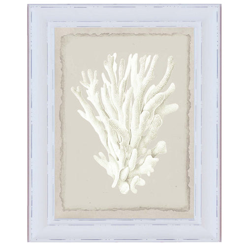 White Branching Coral Print In Beaded Frame