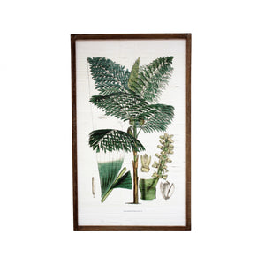 Fruitful Tree On Bamboo In Natural Frame  Homewares nz