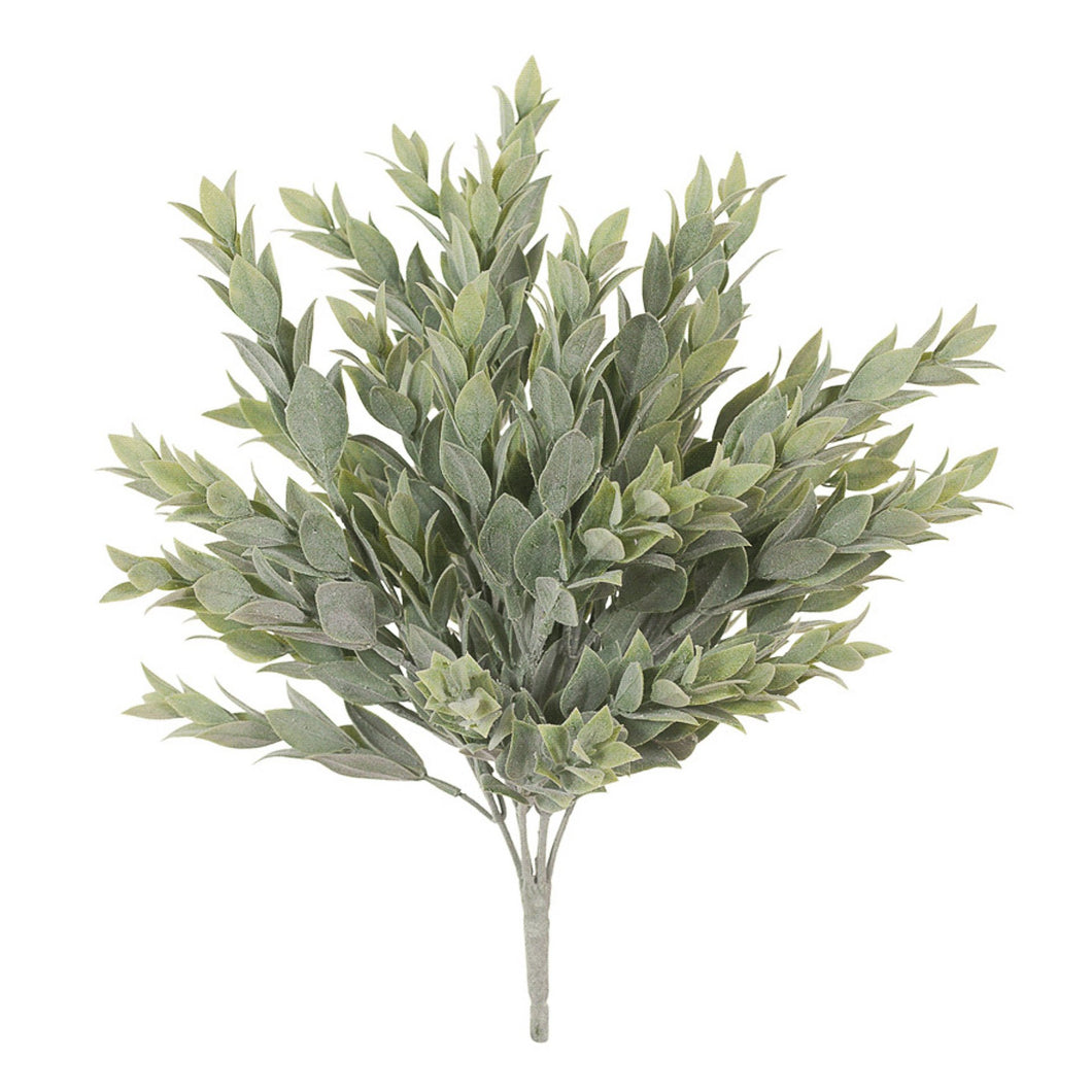 Ruscus Bush 38cm  Homewares nz