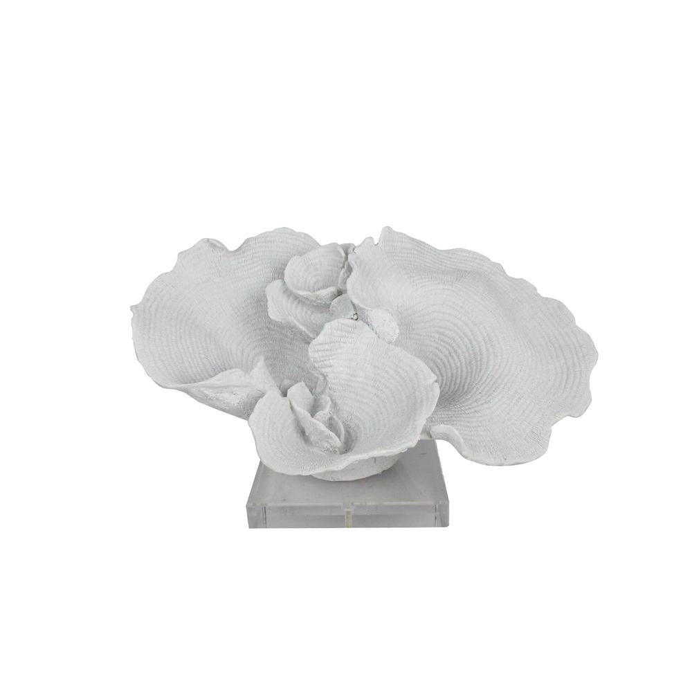 White Fann Coral On Clear Base 34cm Homewares nz