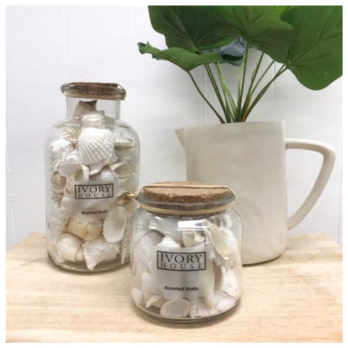 Mixed White Shells In Corked Jar - Small
