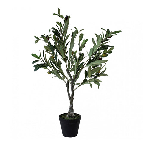 Olive Tree 65cm  Homewares nz