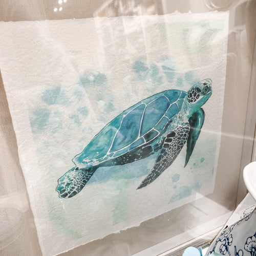 Watercolour Turtle In Natural Frame  Homewares nz