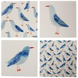 Curious Seagull Coasters (Assorted)  Homewares nz