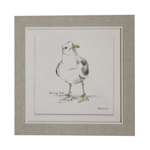 Framed Gull Print  Homewares nz