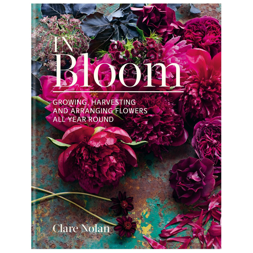 In Bloom by Clare Nolan  Homewares nz