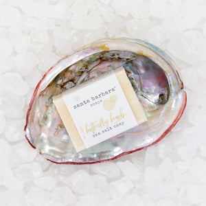 abalone shell gift set - butterfly beach