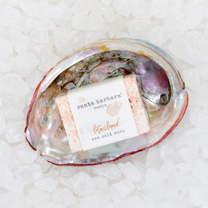 abalone shell gift set - lotusland
