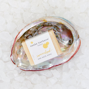 abalone shell gift set - summerland